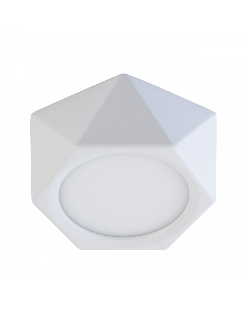6W LED Surface mounted light