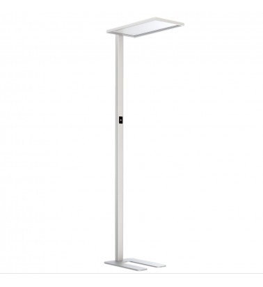 55W LED Free-standing luminaire